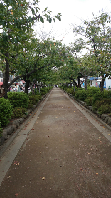 21鎌倉道