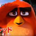 映画『アングリーバード』友情編