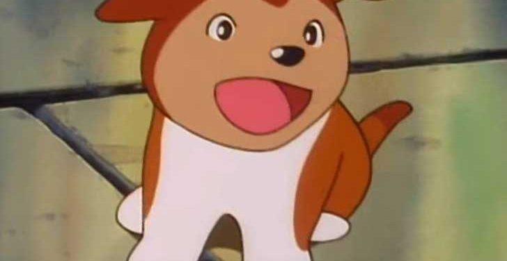 TVアニメ『 名犬ラッシー 』が教えてくれた愛犬の大切さ