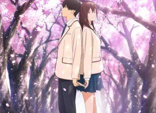その青春に、きっとあなたは涙する。劇場アニメ「君の膵臓をたべたい」Blu-ray&DVD発売決定!