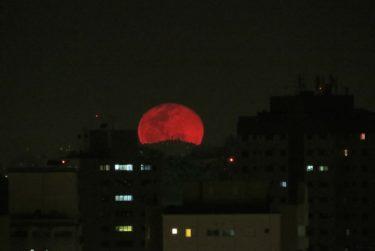 お月見まえに知ると見方が変わる月にまつわる4つの謎!