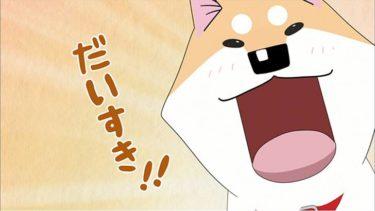 『いとしのムーコ』はキュートなわんちゃんが主人公!!