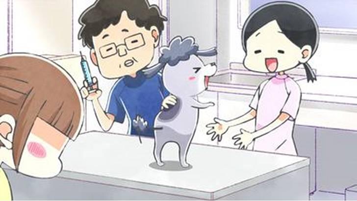 TVアニメ『犬と猫どっちも飼ってると毎日たのしい』第4~6話【感想コラム】